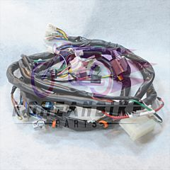 Genuine New Wiring Loom Harness Daelim SN125 B-BONE EFI model